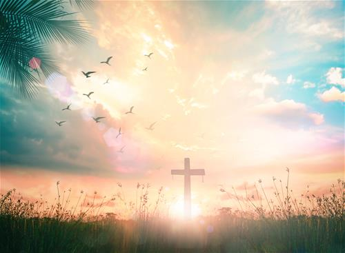 Every Day Faith - I will watch and be ready for Jesus return - iStock-1043390946