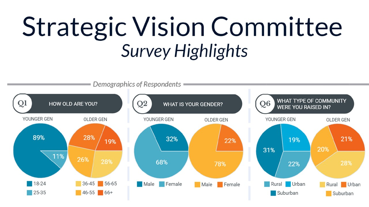 Strategic Vision Committee Survey Highlights (slide 1)